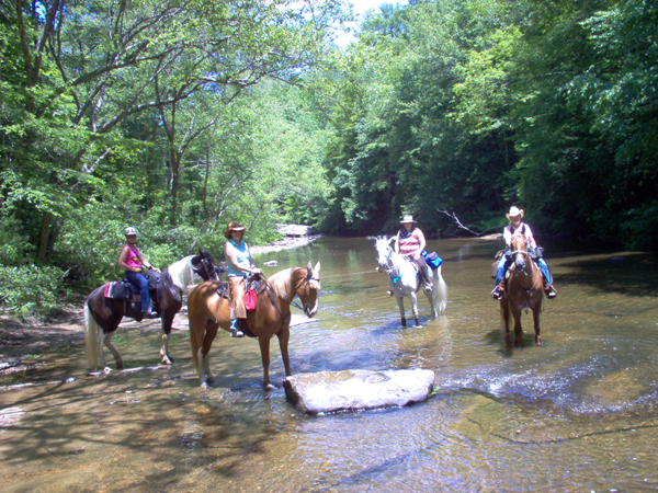 Horseback Trail Riding with Lodging